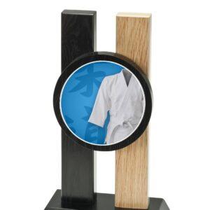 Trophée Judo H342D12