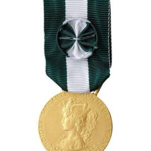 Médaille RDC OR 00728