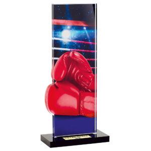 Trophée Boxe PN085