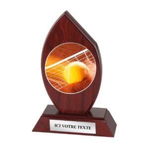 Trophée Tennis H163D17