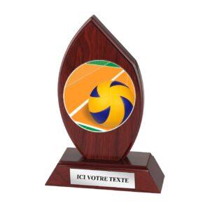 Trophée Volley H163D20