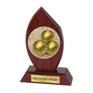 Trophée Boule Lyonnaise H163D21