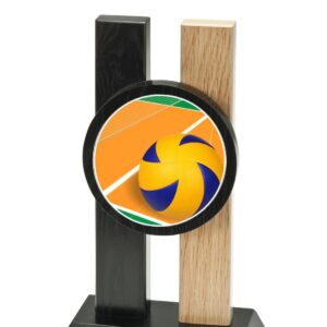 Trophée Volley H342D20