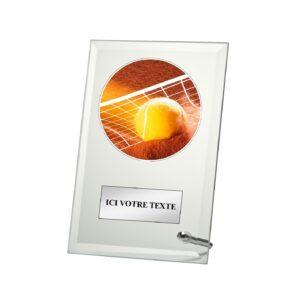 Trophée Tennis W203D17